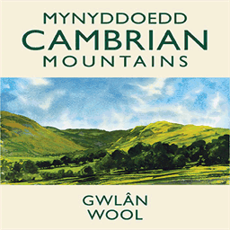 cambrianmountainswool.org